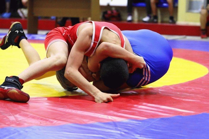 Сахалинец Денис Ляпушкин завоевал золотую медаль главенства Дальнего Востока погреко-римской борьбе