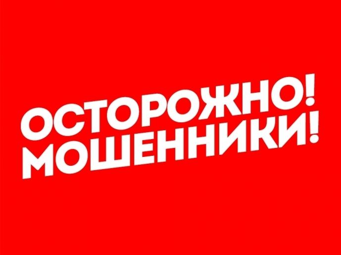 Жителя Саранска одурачили насайте «однодневке»