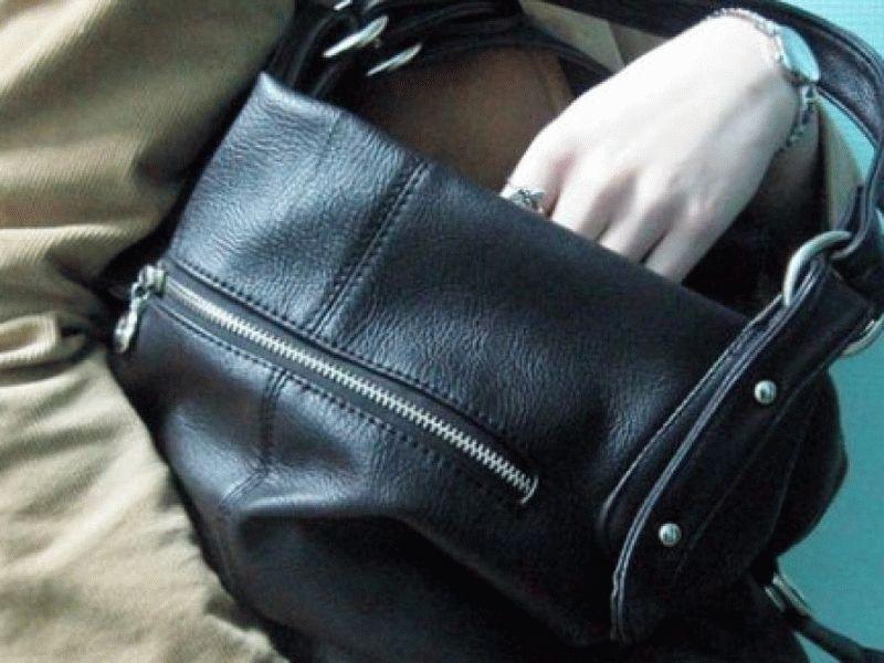 Жительница Саранска украла  изтакси портфель студента с85 тыс. руб.